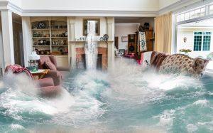 Flooded living room. Reichelt Plumbing, Schererville, IN