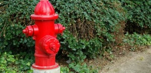 Can A Plumber Check a Cook County Fire Hydrant?