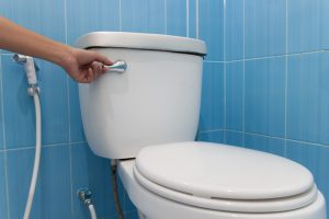 Person reaching out to flush a toilet