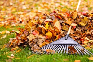 Prepare Your Homes Plumbing For Fall Schererville IN